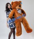 'Плюшевый медведь Омск'